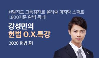 강성민 헌법 OX캠프